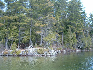 tribble rd, Rosseau Ontario, Canada Located on Skeleton Lake